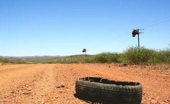 Did Tire Gators Cause Your Truck Crash?
